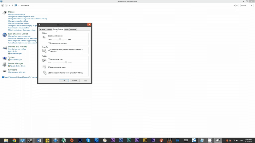 2.4 Click on Pointer Options tab.