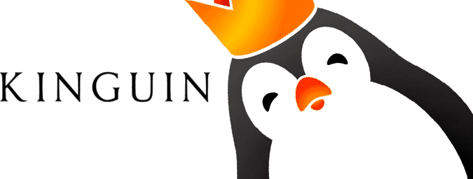 Is Kinguin Legit?