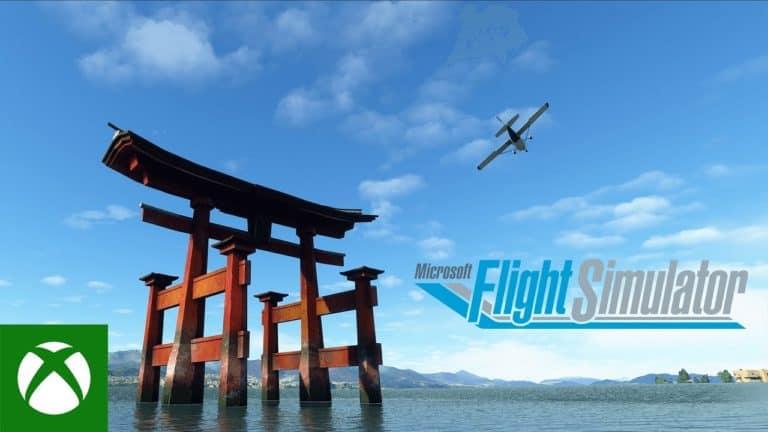 Flight Simulator Japan