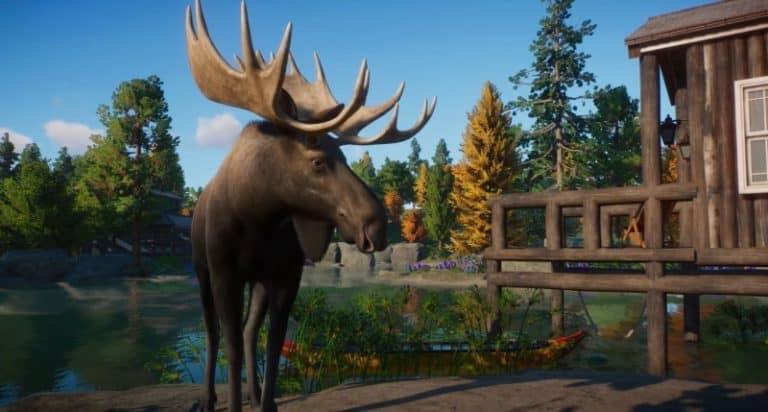 PZ moose